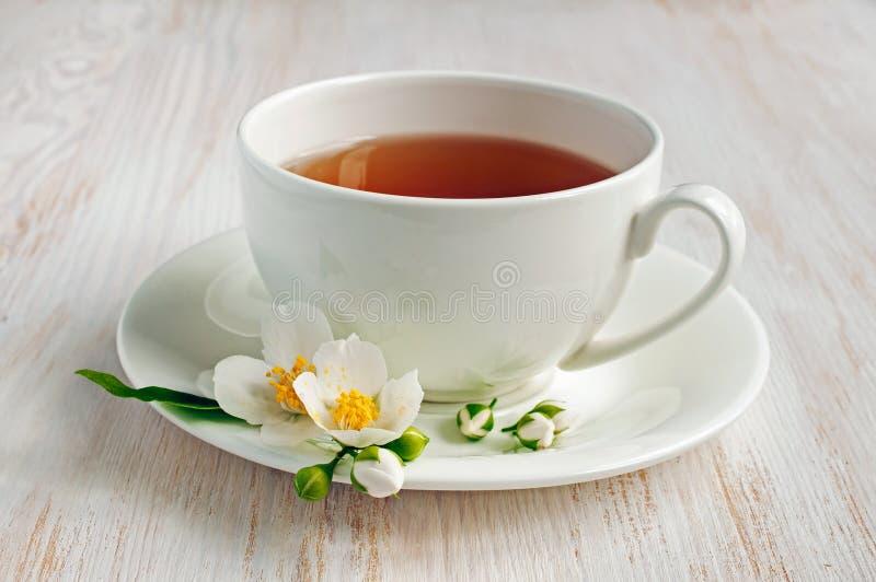 Jasmine Tea stock afbeelding