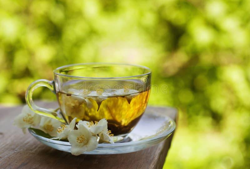 Jasmine tea stock image