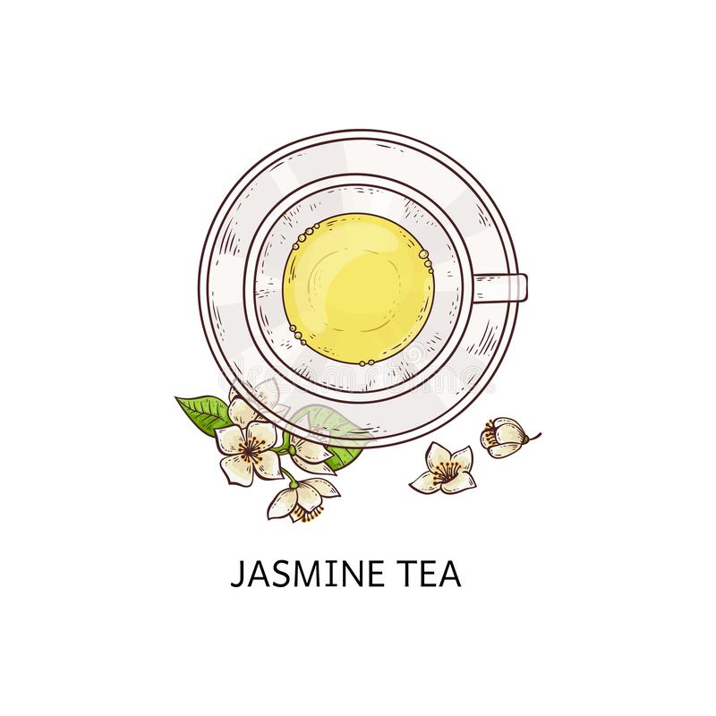 Jasmine tea top view drawing - glass cup with yellow beverage on plate with white flower vector illustration
