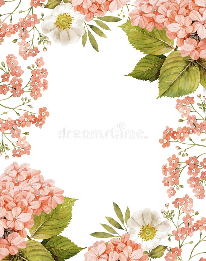 Jasmine, white roses and forget me not background. Composition in pink vector illustration