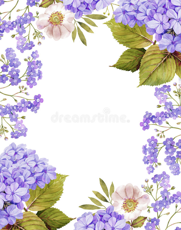 Jasmine, white roses and forget me not background composition. In violet vector illustration