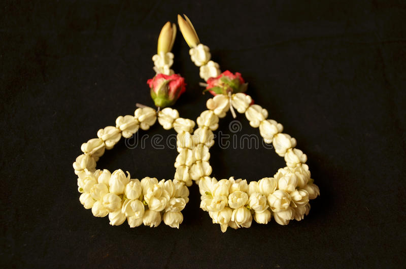 Jasmine wrist garlands for congratulatory festival stock photography