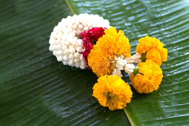 Jasmingirlande von Blumen auf Bananenblatthintergrund lizenzfreies stockfoto