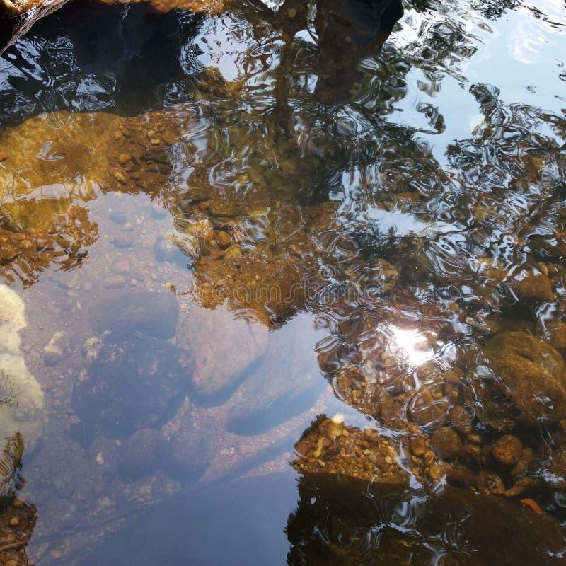Jasna świeża woda strumień w Srilanka obraz stock