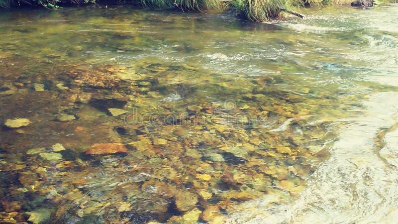 jasna creek zdjęcia stock