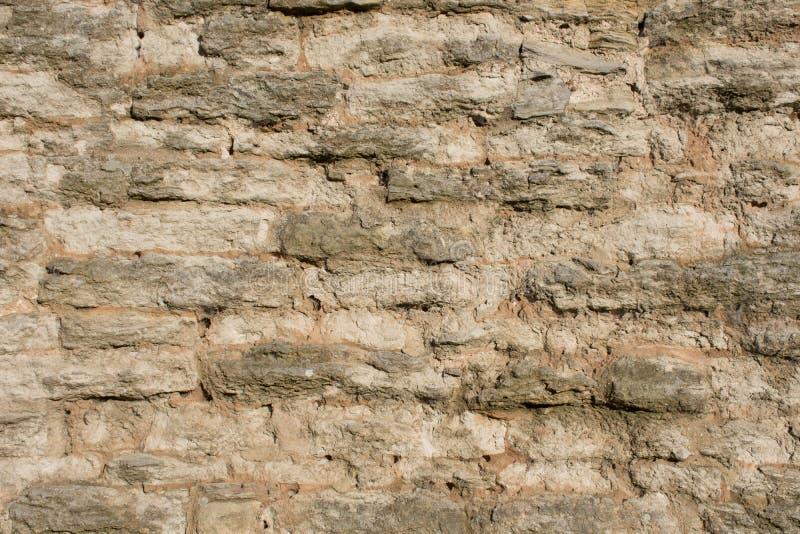 Jasnobrązowy kamienny stary ścienny tło obrazy royalty free