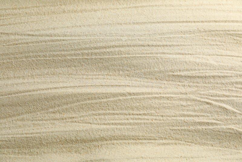 Jasny denny piasek jako tło, przestrzeń dla teksta i zbliżenie, katya lata terytorium krasnodar wakacje obraz royalty free