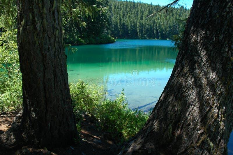 jasny jeziorny Oregon obrazy royalty free