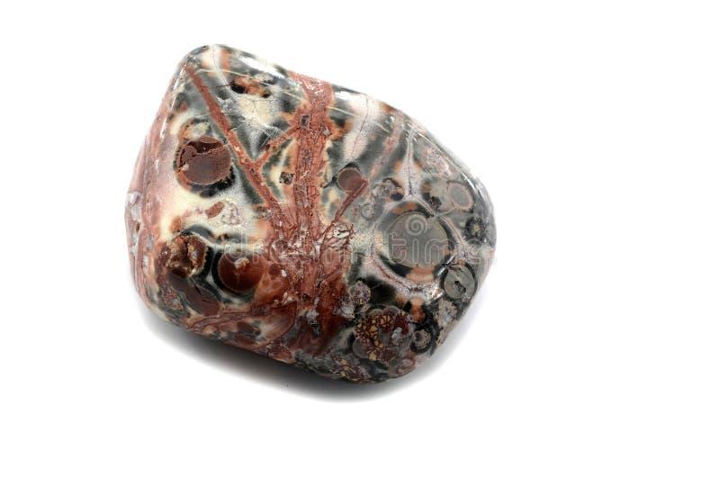 Jaspe de la piel del leopardo fotografía de archivo libre de regalías