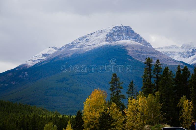 Jasper National Park imagem de stock