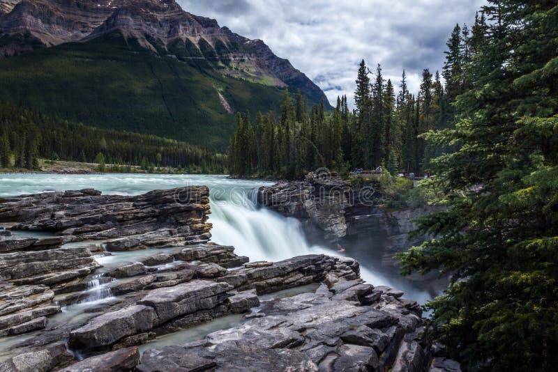 Jasper National Park Athabaska cade Alberta Canada fotografia stock libera da diritti