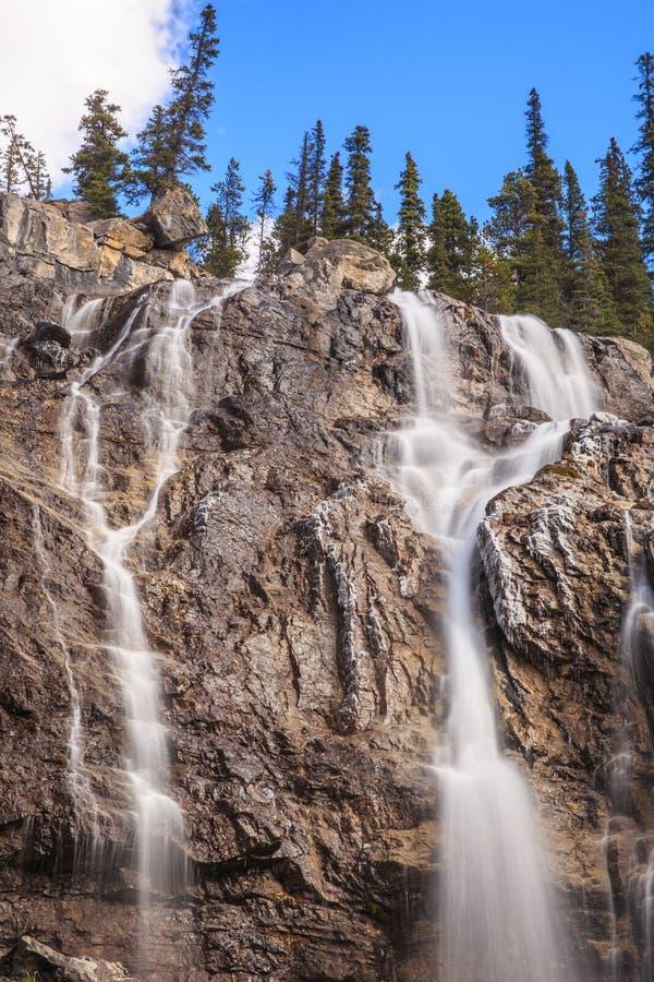 jasperen för alberta banff Kanada fallsicefields lokaliserade av gångallétangle arkivbilder