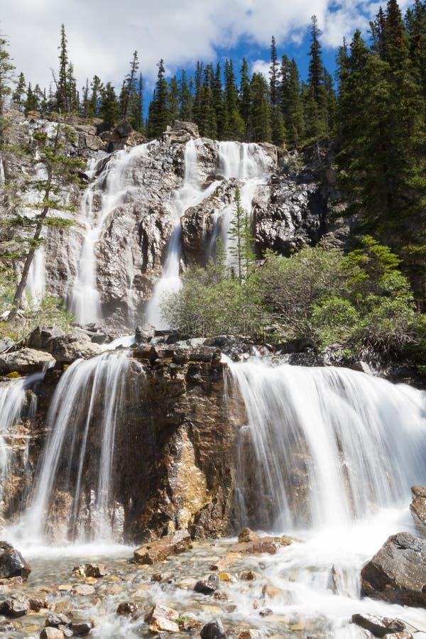 jasperen för alberta banff Kanada fallsicefields lokaliserade av gångallétangle royaltyfria foton