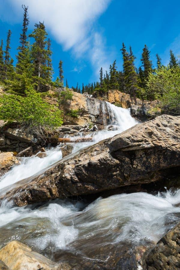 jasperen för alberta banff Kanada fallsicefields lokaliserade av gångallétangle arkivfoton