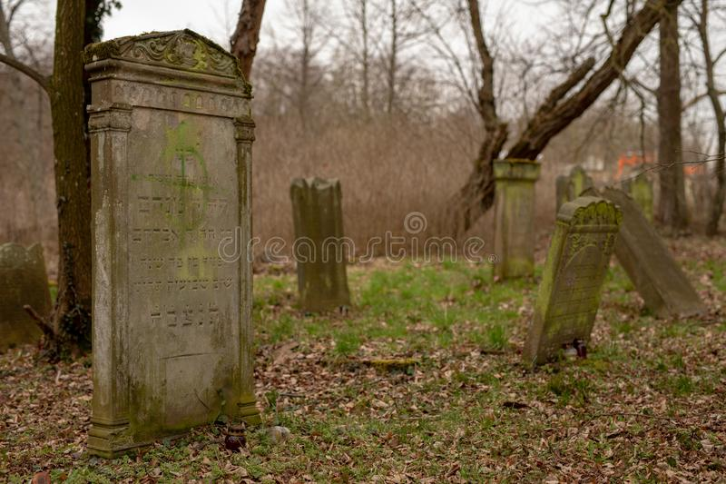 Jastrowie, zachodniopomorskie / Poland - March, 21, 2019: The Old Jewish Cemetery. Neglected tombstones in a forgotten cemetery royalty free stock photo