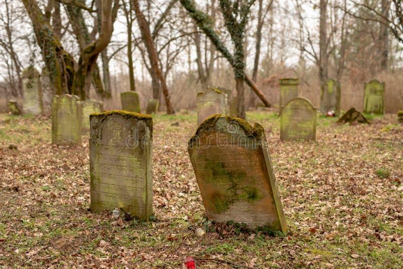 Jastrowie, zachodniopomorskie/Polonia - 21 marzo, 2019: Il vecchio cimitero ebreo Pietre tombali trascurate in un cimitero diment fotografia stock libera da diritti