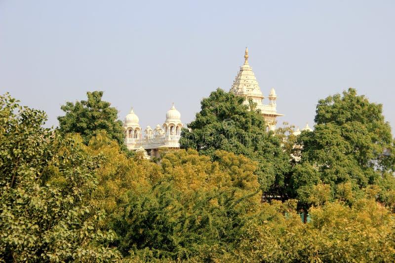 Jaswanth Thada dietro fogliame fotografia stock libera da diritti