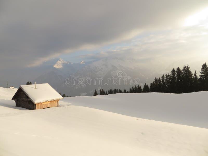 Jata na śnieżnym polu obraz royalty free