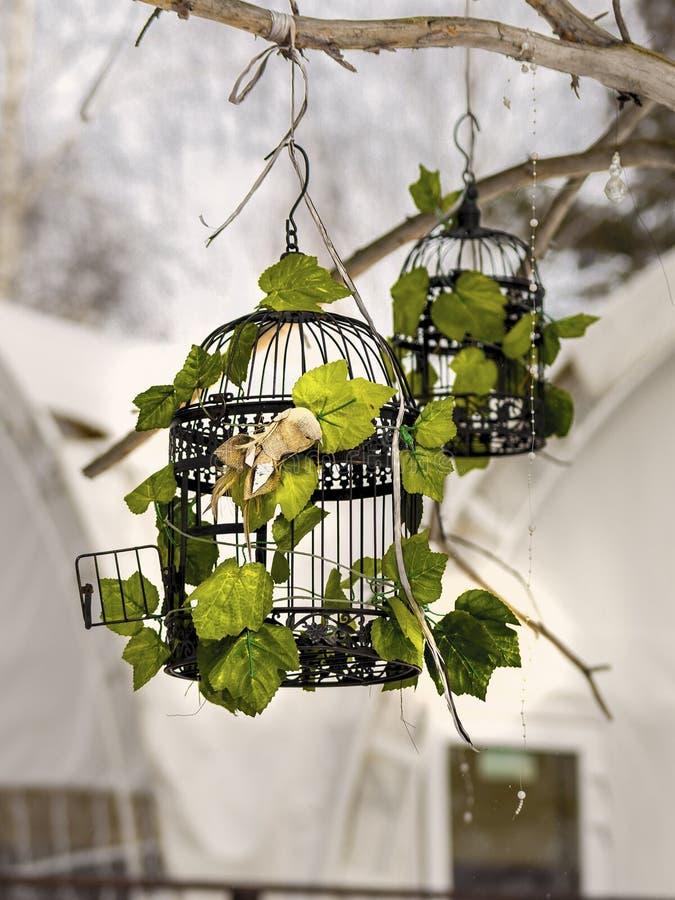Jaula de pájaros en un árbol imagen de archivo libre de regalías