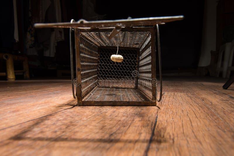 Jaula oxidada de la rata foto de archivo