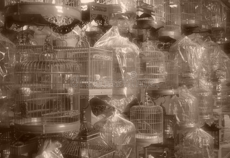 Jaulas de pájaro chinas - estilo de la vendimia imagen de archivo libre de regalías
