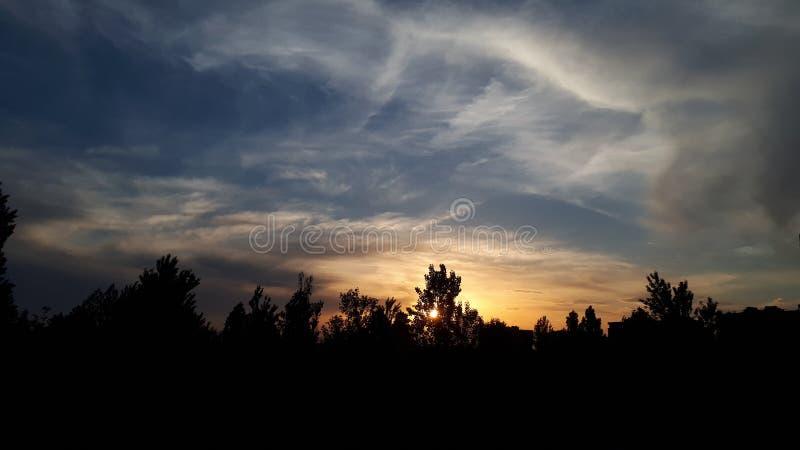 Jaune bleu de coucher du soleil de dimanche d'arbre du soleil de ciel photographie stock libre de droits