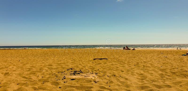 jaune de plage photo stock