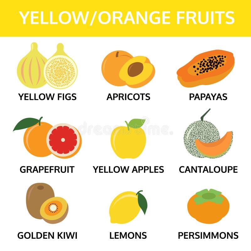 jaune et orange porte des fruits le graphique d'infos de collection, vecteur de nourriture illustration libre de droits