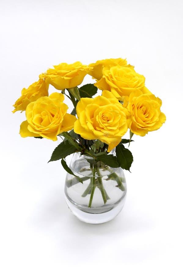 Jaunissez les roses sur le blanc photographie stock libre de droits