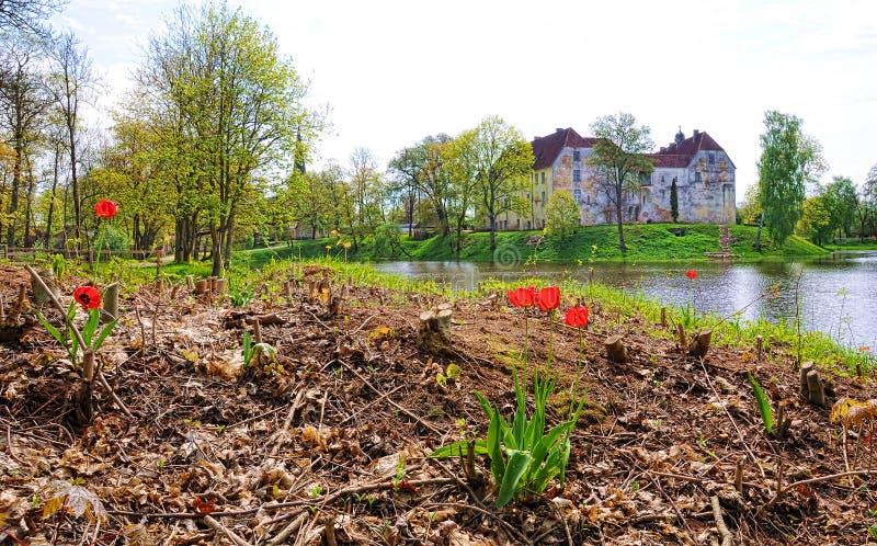 Jaunpils城堡在拉脱维亚 免版税库存图片