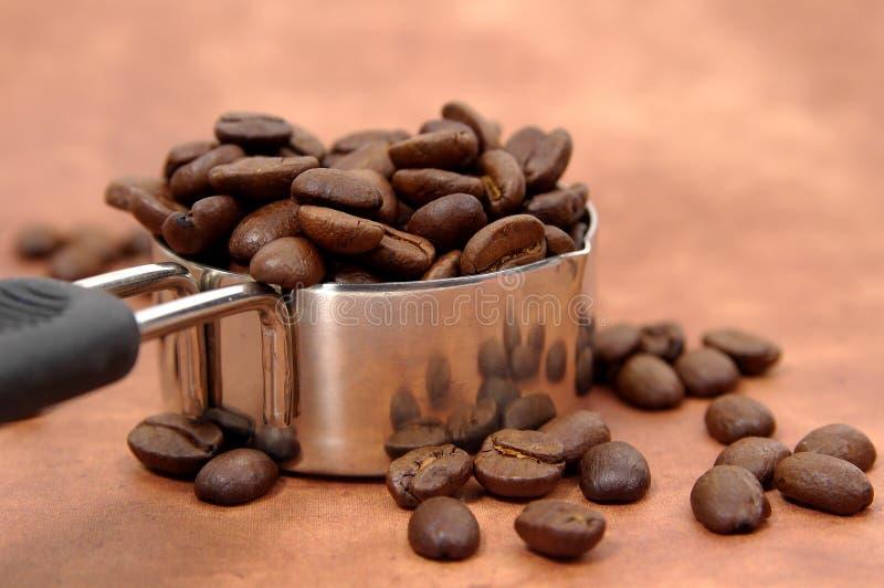 Download Java que sere 3 foto de stock. Imagem de marrom, java, feijão - 53296