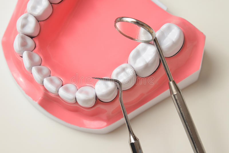 Jaw model and dental tool set stock photography