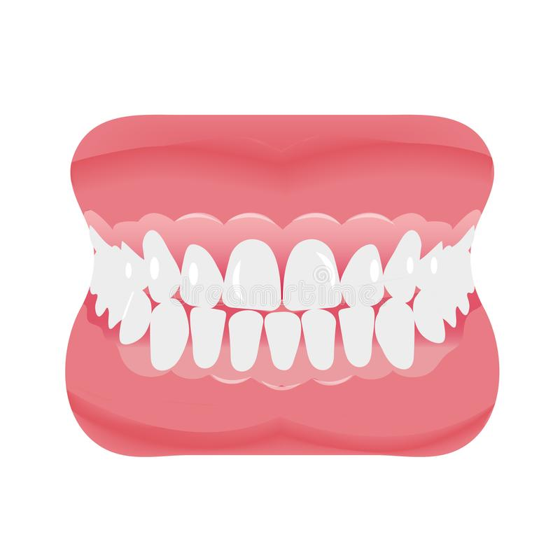 Jaw with teeth icon flat style. Open mouth, dentures. Dentistry, medicine concept. Isolated on white background. Vector vector illustration