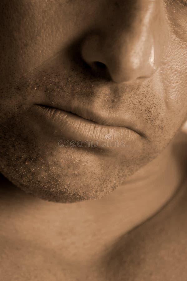 Download Jawline fotografering för bildbyråer. Bild av näsa, macho - 523893