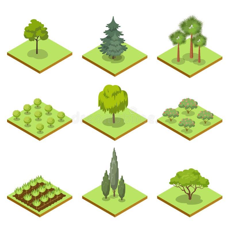 Jawnego parka dekoracyjnych drzew isometric 3D set ilustracja wektor