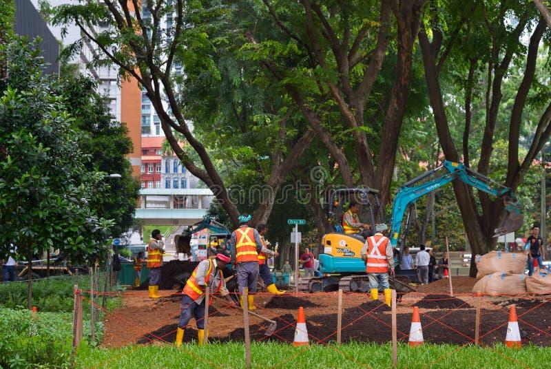 Jawnego parka rozwija pracy Singapur fotografia royalty free