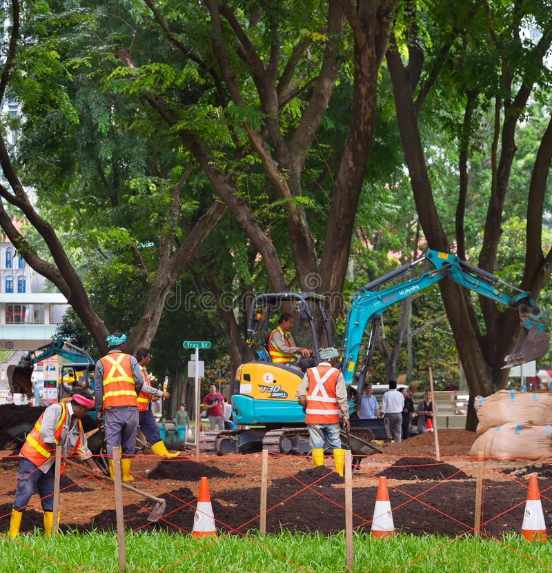 Jawnego parka rozwija pracy Singapur obrazy royalty free