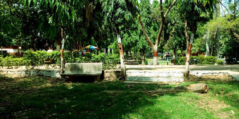 Jawnego parka widoku zapasu zadziwiająca fotografia zdjęcie royalty free