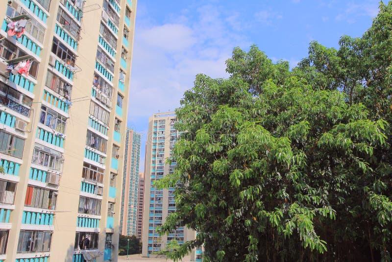 Jawny dom w HK 3 mo?e 2014 zdjęcie royalty free