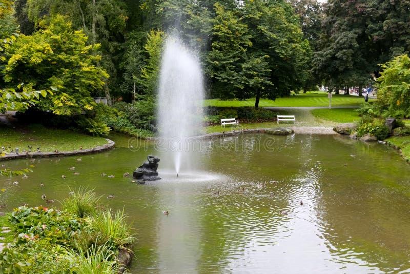 Jawny park, staw i fontanna, zdjęcie stock