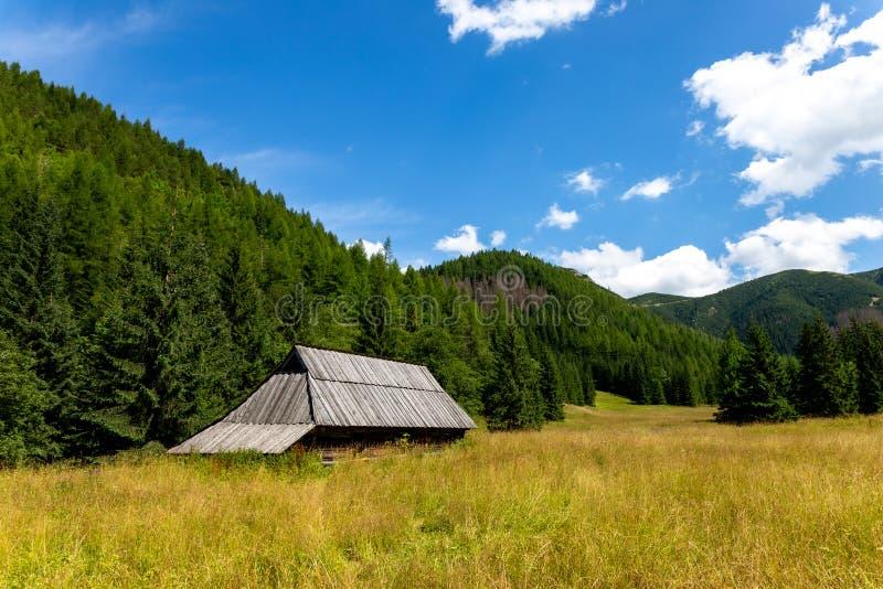 Jaworzynka Valley in Tatra mountains. Poland royalty free stock images
