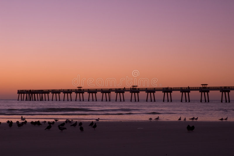 Download Jax Beach at Dawn stock photo. Image of surf, early, dawn - 123748
