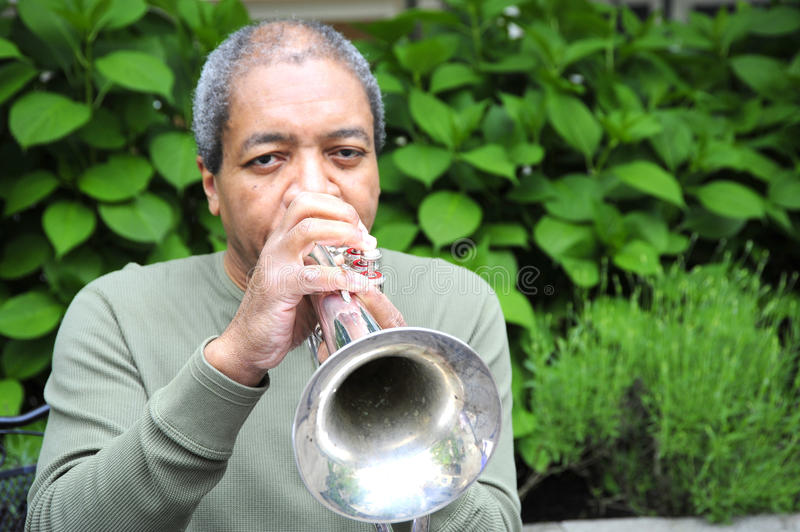 Download Jazz Musician. Stock Photography - Image: 26459162