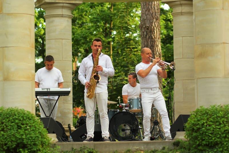 Jazzband som ger konsert på etappen Central Park för öppen luft Nolla-Fest royaltyfri fotografi