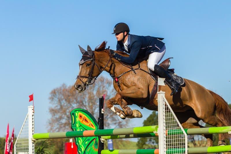 Jeźdza konia doskakiwanie fotografia royalty free