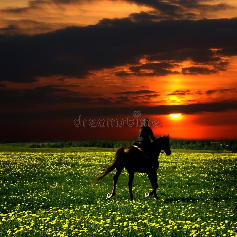 jeździec koń. fotografia stock