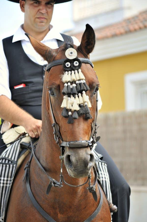 jeździec końskiego hiszpański obraz stock
