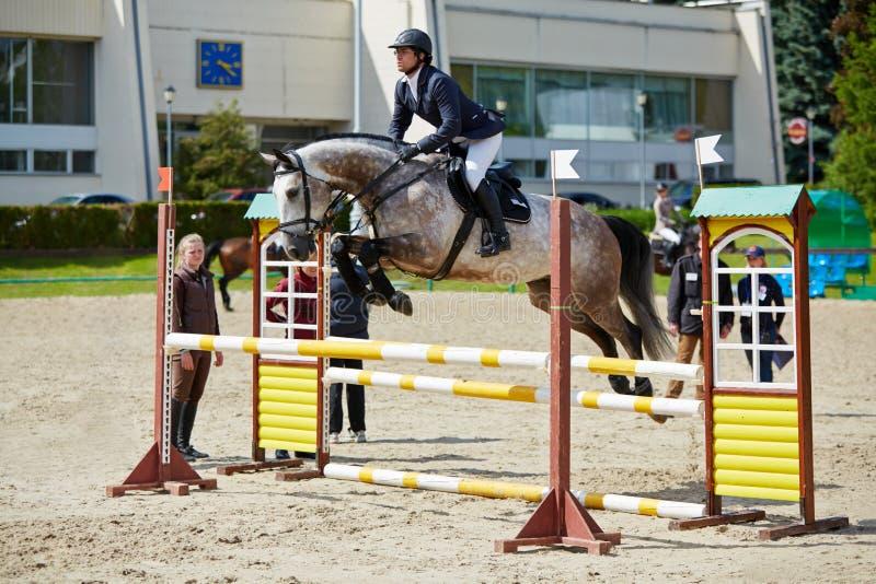 Jeździec na koniu przy międzynarodowymi konkurencjami obraz stock