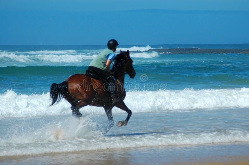 jeździec na plaży obraz stock