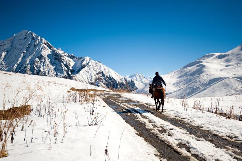 Jeździec w górach Gruzja obraz stock